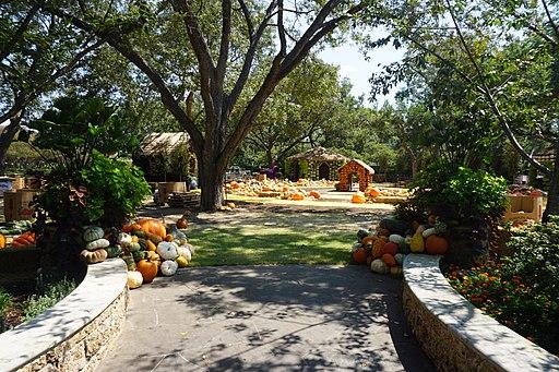 Dallas_Arboretum_and_Botanical_Garden_September_2017_22_(Pecan_Grove_Pumpkin_Village)