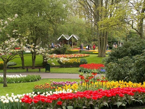 Keukenhof Gardens flickr by stevekc
