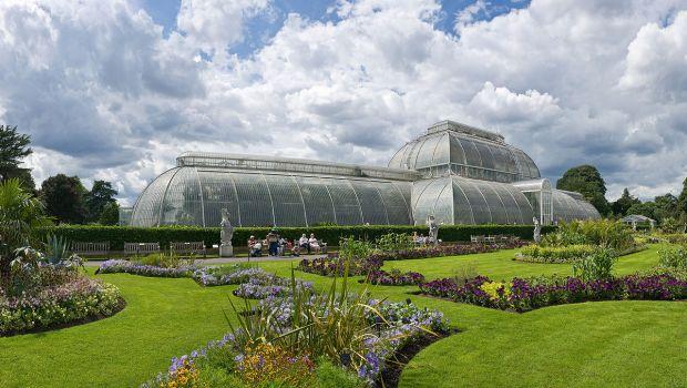 Kew_Gardens_Palm_House,_London_-_July_2009 wiki