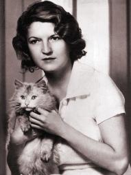 zelda cat
