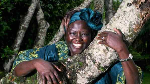 Optimized-Wangari-Maathai-Muta-citizen-TV-cover