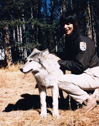 Mollie with a grey wolf